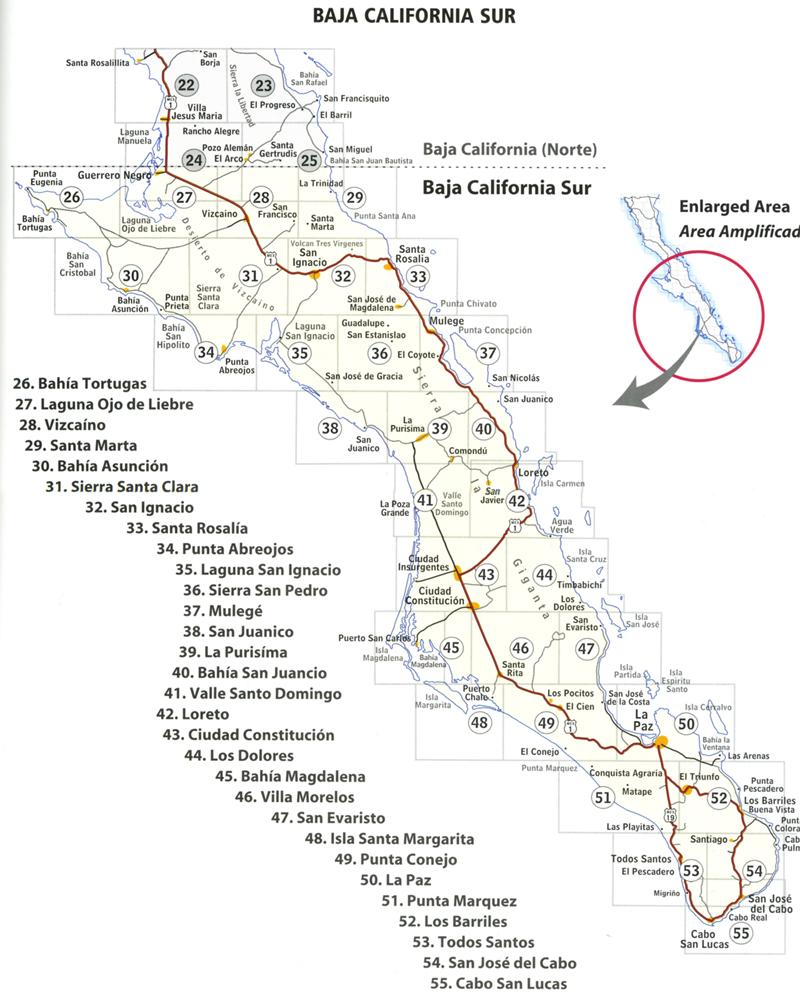 La paz fishing trip july 2004 for Baja california fishing