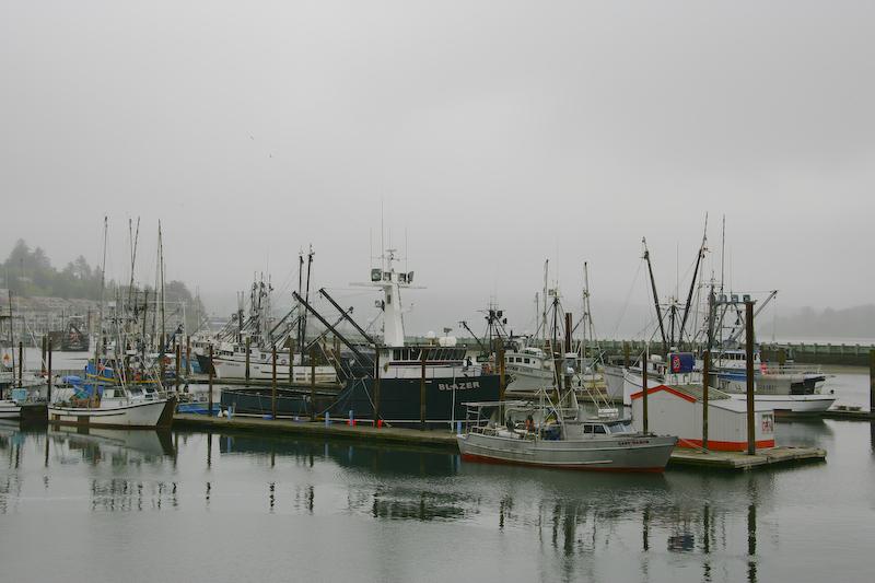 Newport or to crescent city ca for Newport oregon fishing