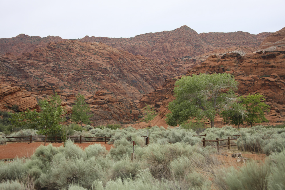 Day 2: Snow Canyon